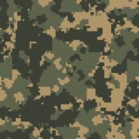 CAM00036